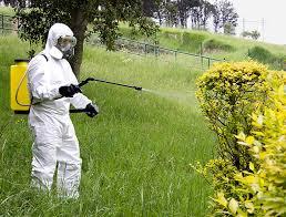 Manipulador de plaguicidas de uso fitosanitario. Nivel básico (25 horas)